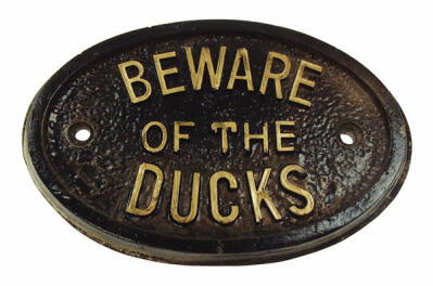 'Beware of the Ducks' skilt