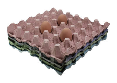 Egg Trays - Multi Pack of 8