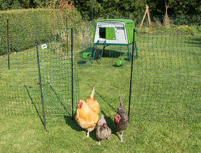 Omlet Chicken Fencing Mk2 - 32 metres - inc. Gate, Poles and Guy Lines