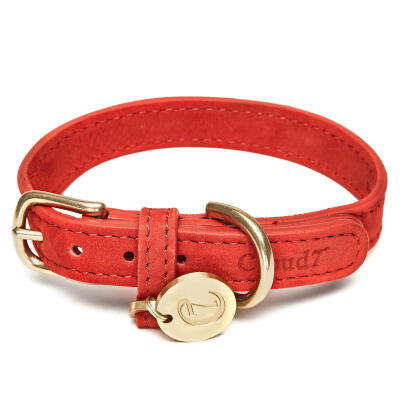 Cloud7 leren halsband - Cherry Red - Medium