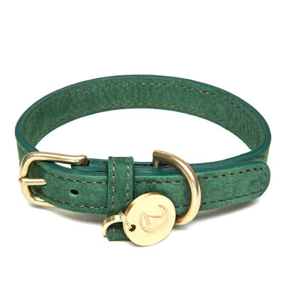 Cloud7 leren halsband - Park Green - Medium