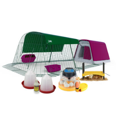 Eglu Go Chicken Coop Purple with 2m Run + Brinsea Mini II Eco Starter Pack