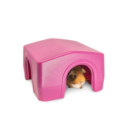 Zippi Boxed Guinea Pig Shelter Purple (079.0045.0002)