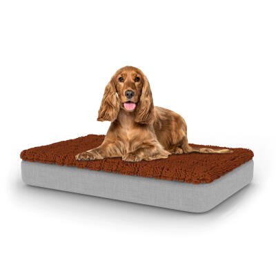 Topology Dog Bed with Microfibre Topper - Medium