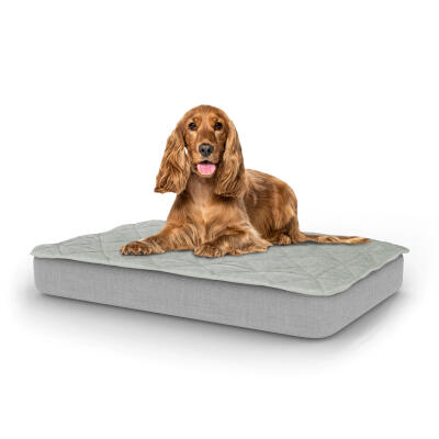 Topology Dog Bed with Quilted Topper - Medium