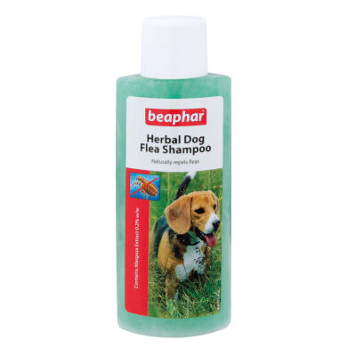 Beaphar Herbal Flea Shampoo for Dogs 250ml
