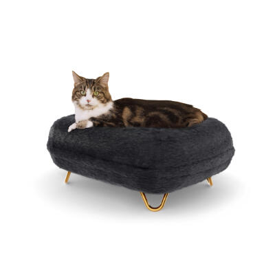 Maya® Donut Cat Bed with Hairpin Gold feet