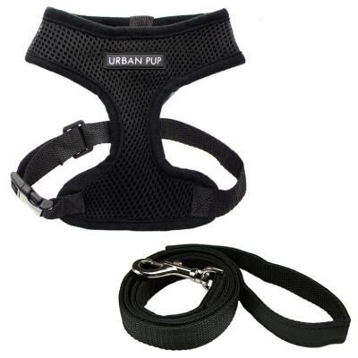 Urban Pup Jet Black Harness & Lead Set Small