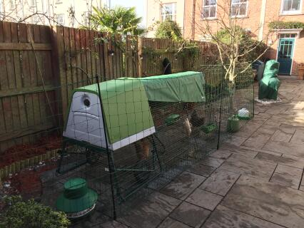 Eglu Go Up 1 meter extension, heavy duty cover and eglu fencing...