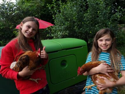 Eglu Cube makes for happy chickens!