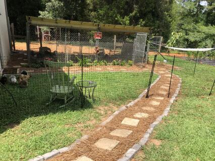 Chicken fencing 39'