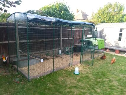 I went for 2x3x2m and added an extra meter run later. It's easy to get into for cleaning and has plenty of space for when they're not free ranging.
