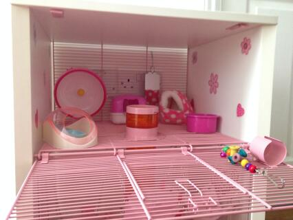 Lillies new pink cage