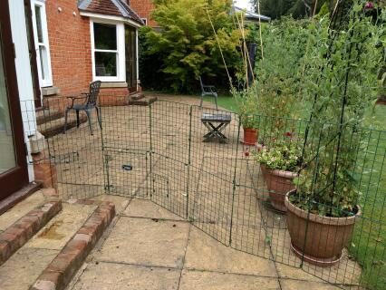 We used the playpen panels to make an enclosure outside the door from the kitchen to the garden, with access to gated run at the side of the house. Bunnies love it!