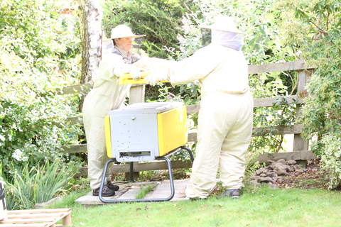 Putting the bees into the bee haus