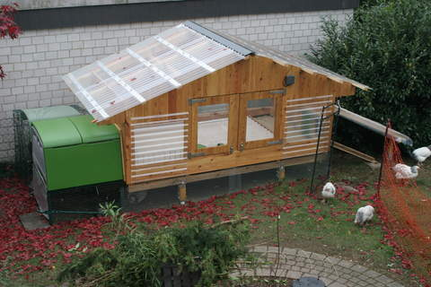 Eglu Cube supplemented by a winter run with automatic door. Above 5,5 m2 and below 5,5 m2 protected run.