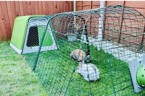 Eglu Go rabbit hutch 2m run