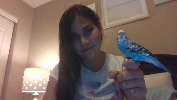 My beloved parakeet Max