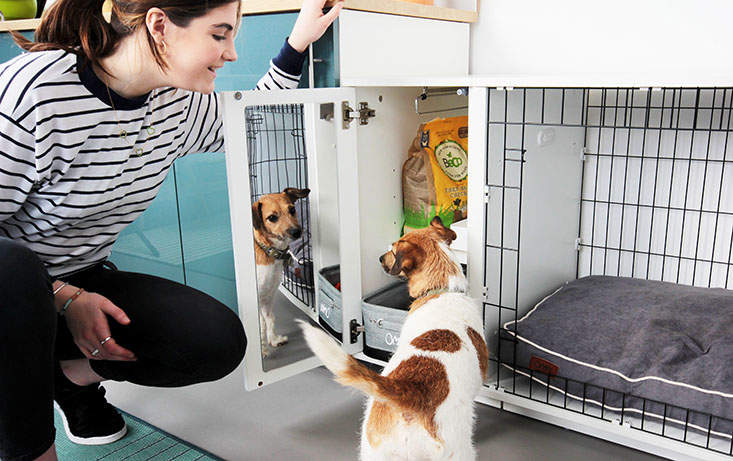 The Omlet Fido Studio's wardrobe keeps all your dogs things tidy