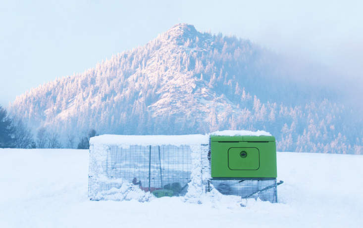 Omlet's Automatic Chicken Coop Door has been tested in extreme temperatures