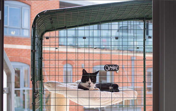Weather proof covers are available to ensure your cat remains dry and shaded