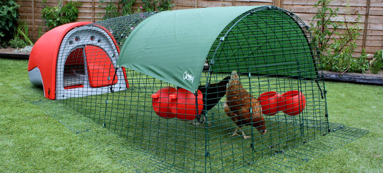 Eglu Classic Chicken Coop with run and chickens in garden