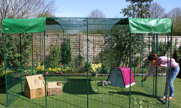 The Outdoor Rabbit Run is extendable, so you can make it as large and spacious a play pen as you like!