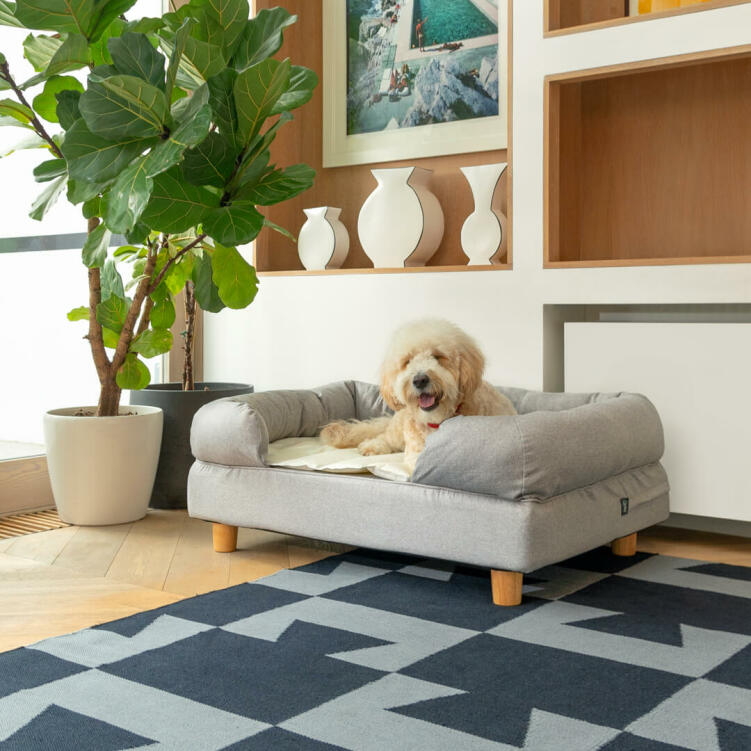 Woody the Goldendoodle is resting in his Medium Bolster Bed accessorised with a set of stylish Round Wooden Feet that will look great in any home.