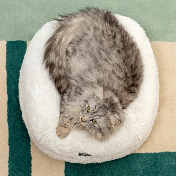 The firm, donut shape allows your cat to sink into the deep cushion while still being supported all around, like a big, warm cuddle!