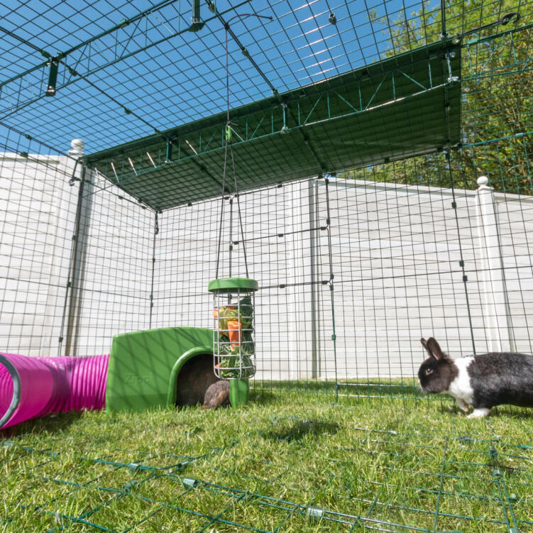 Fully enclosed Zippi rabbit runs are made from heavy duty steel weldmesh and give your pets 360° security.