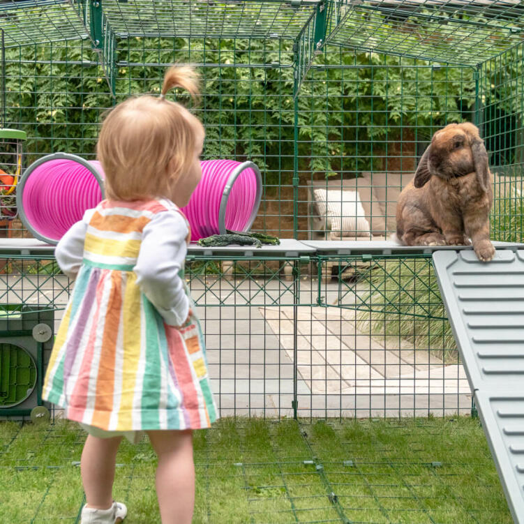 Children will love mixing up their bunnies run with new levels and watching them explore their adventure playground.