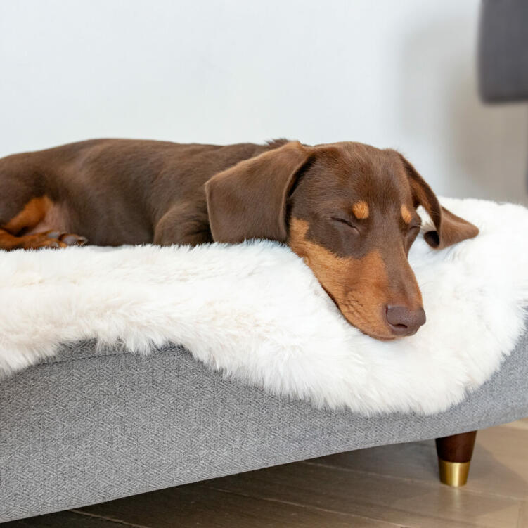 Choose from a range of feet to elevate your dog's bed for an extra stylish touch that will perfectly compliment the rest of your furniture.