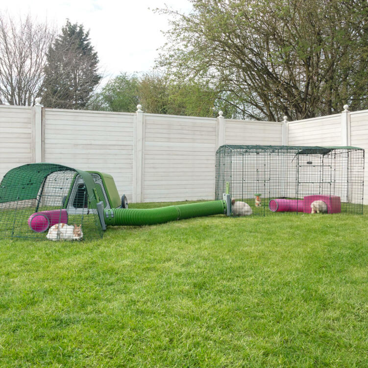 You can extend both the width and length of your Zippi Rabbit Run to carry on creating your ultimate rabbit playground!