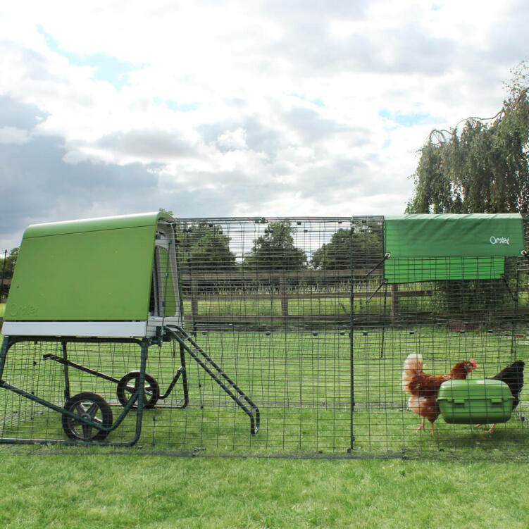 The Eglu Go UP's heavy duty steel run, in an attractive dark green, protects your hens and blends seamlessly in your garden.