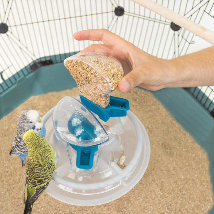 The beautifully integrated bird feeder offers 360 degree refreshment for your pet birds