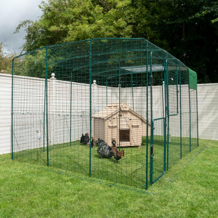 Place the Lenham in a Walk in Chicken Run or fenced off area and give your chickens a safe place to return to at the end of the day.