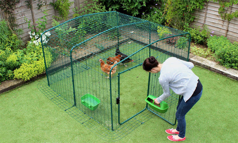 2x2x1 Lo-Rise Chicken Run - attaching feeder through door