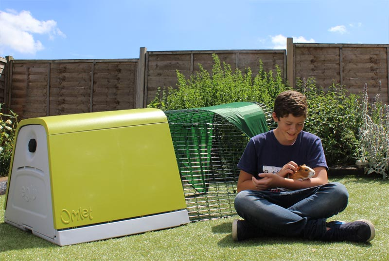 teenager playing with his rabbit and in the background the Omlet eglu hutch