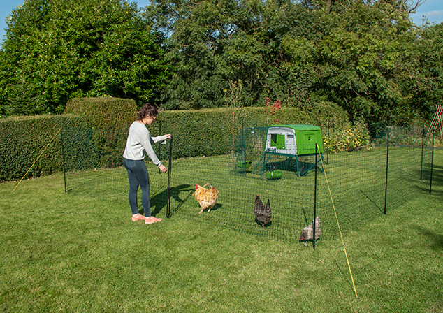 A simple way to keep your chickens in one area of the yard.