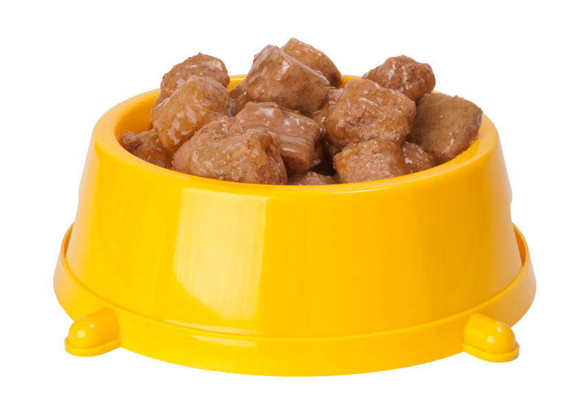 A bowl of wet dog food