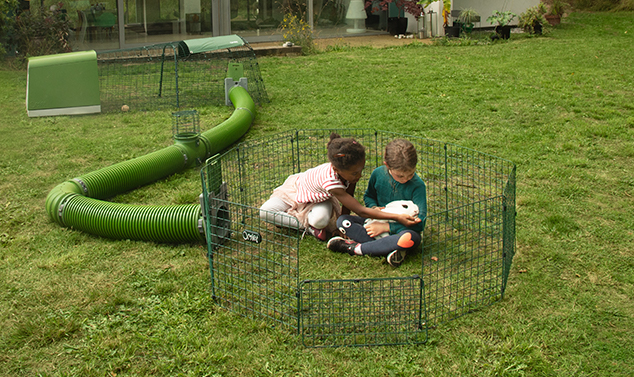 Connect your Eglu Go to the new Zippi Guinea Pig Tunnel