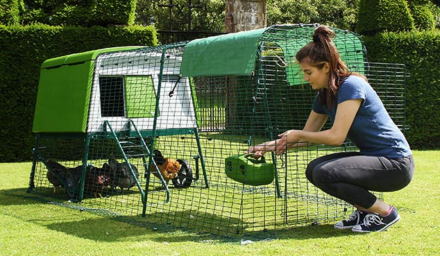A woman opens the stable style door of the Eglu Cube chicken run to allow her hens to free range