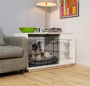 Integrated Dog Crate