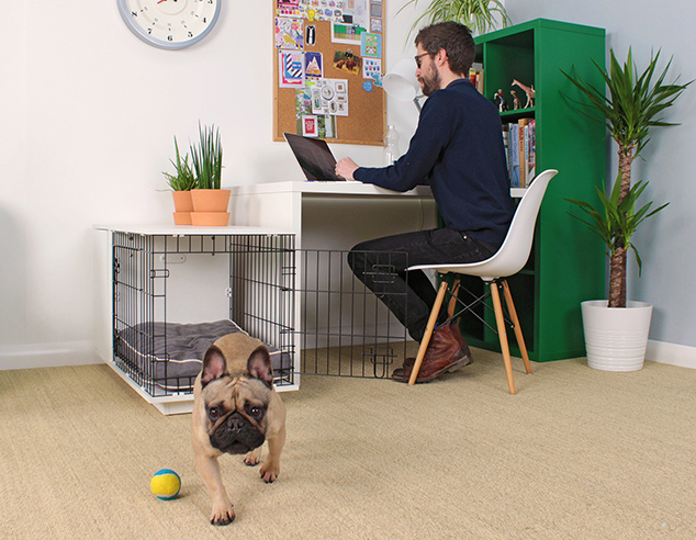 The Omlet Fido Studio fits perfectly into any room in your home.