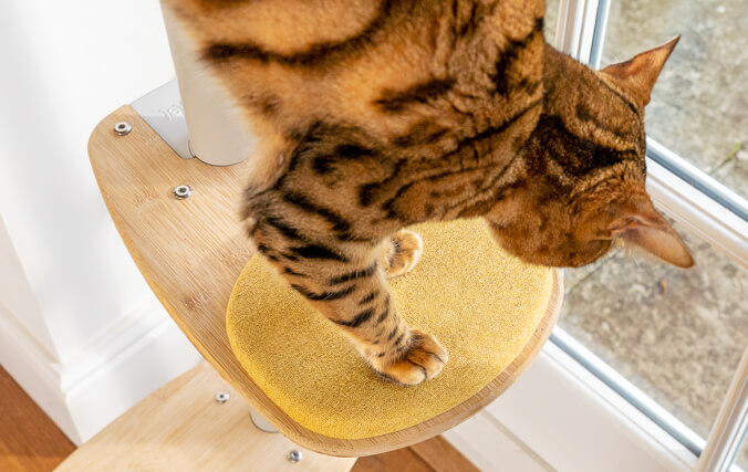 Freestyla cat tree is easy to adjust your Freestyle according to your cats' age and abilities.