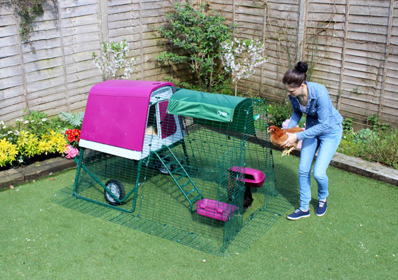 The Eglu Go UP is suitable for most gardens