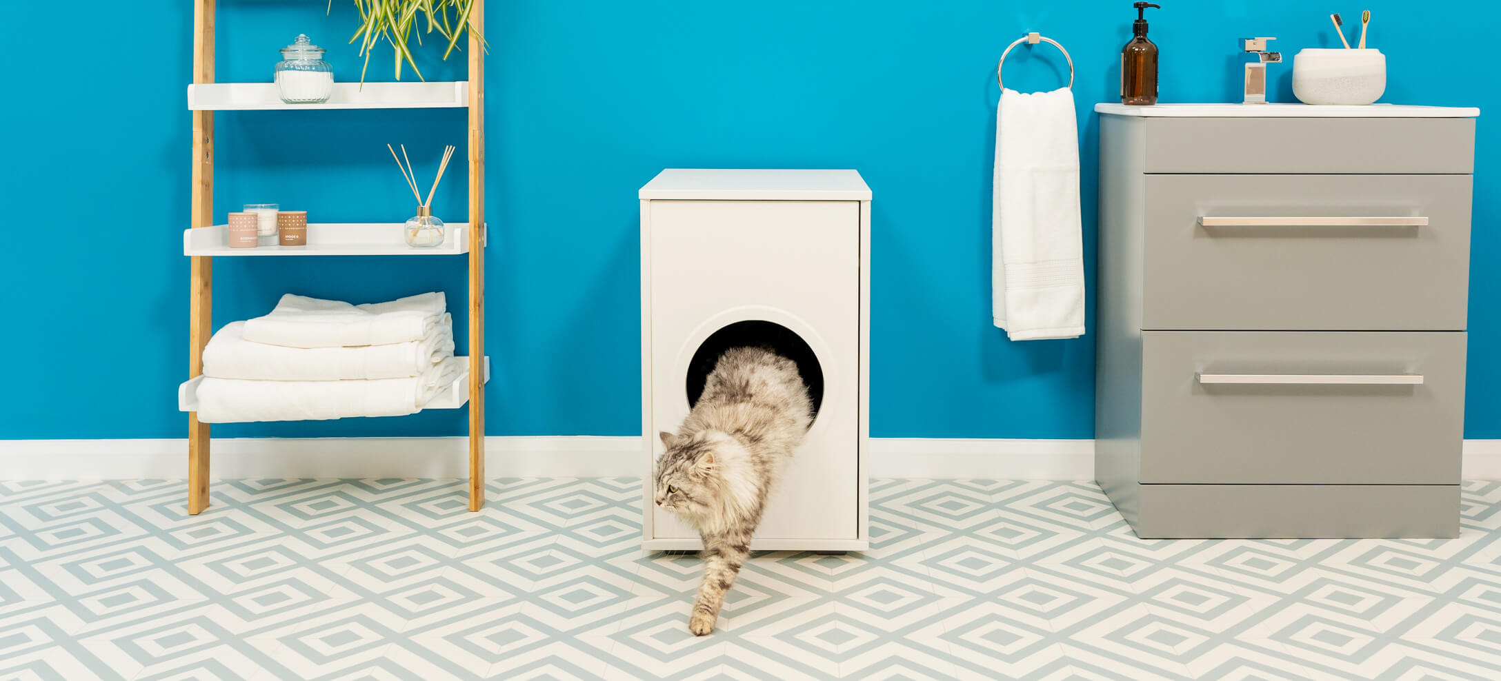 """A grey cat walking out of an enclosed litter box"""" data-image-id="""