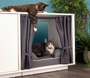 The Maya Nook drapes create an enclosed space for your cat