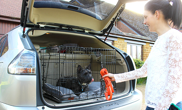 Omlet-Fido-Classic-cage-transport-chien-voiture