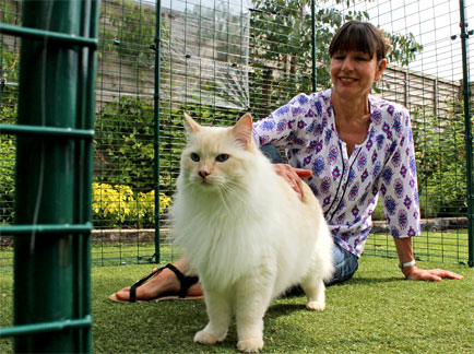 Woman inside the Outdoor Cat Run stroking a ragdoll cat
